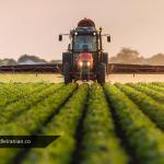 مزارعه و هر آنچه که باید درباره آن بدانید