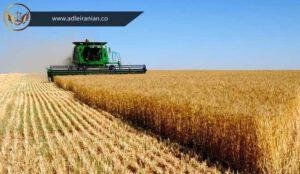 خلع ید زمین کشاورزی